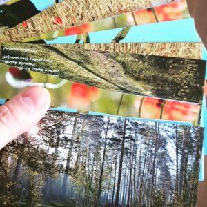 Pastkartes 300 10x15 vienpusējas